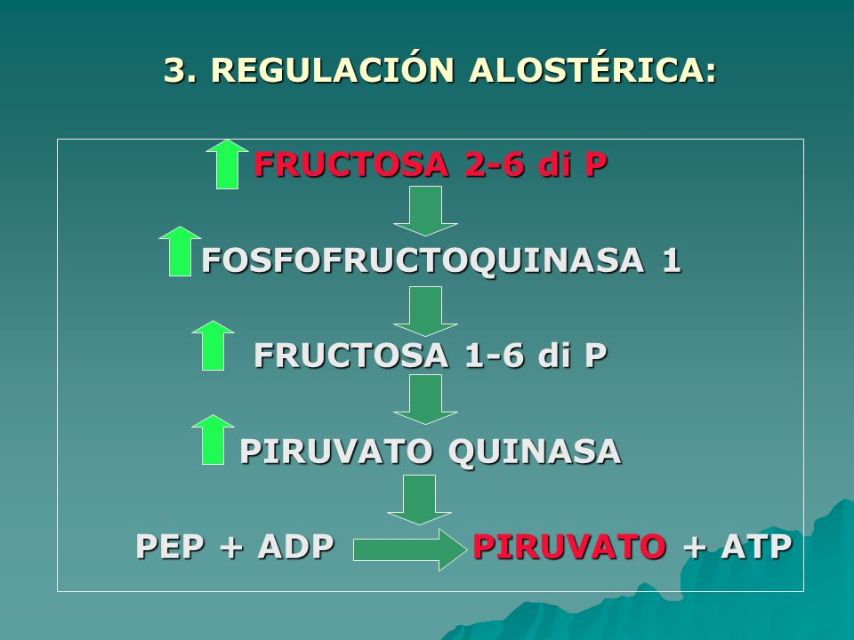 3. REGULACIÓN ALOSTÉRICA: