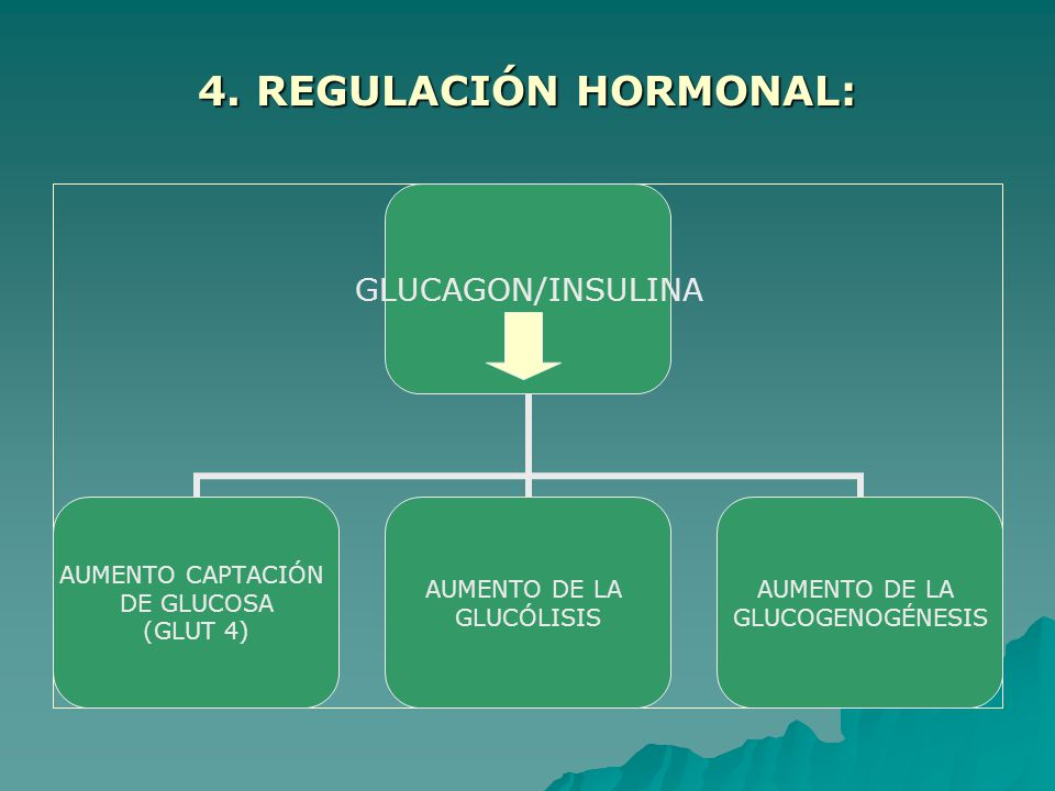 4. REGULACIÓN HORMONAL: