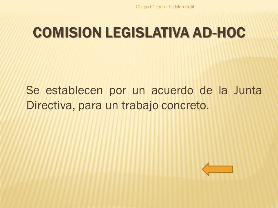 COMISION LEGISLATIVA AD-HOC