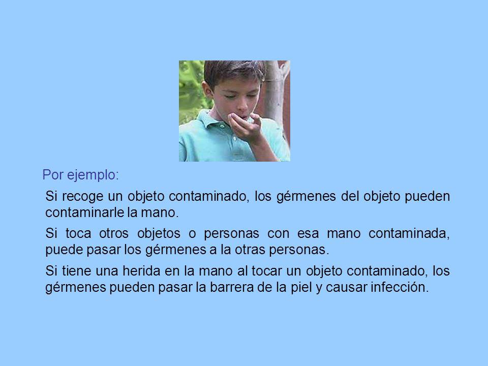 Por ejemplo: Si recoge un objeto contaminado, los gérmenes del objeto pueden contaminarle la mano.