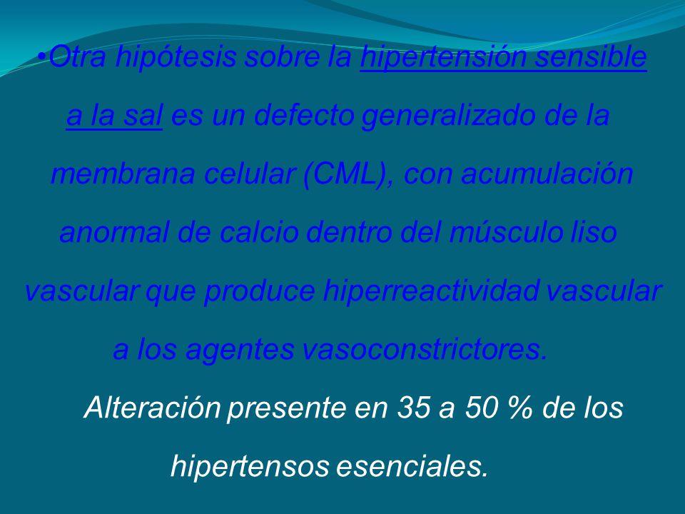 Otra hipótesis sobre la hipertensión sensible