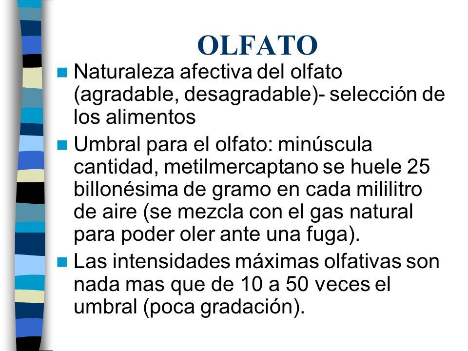 OLFATO Naturaleza afectiva del olfato (agradable, desagradable)- selección de los alimentos.