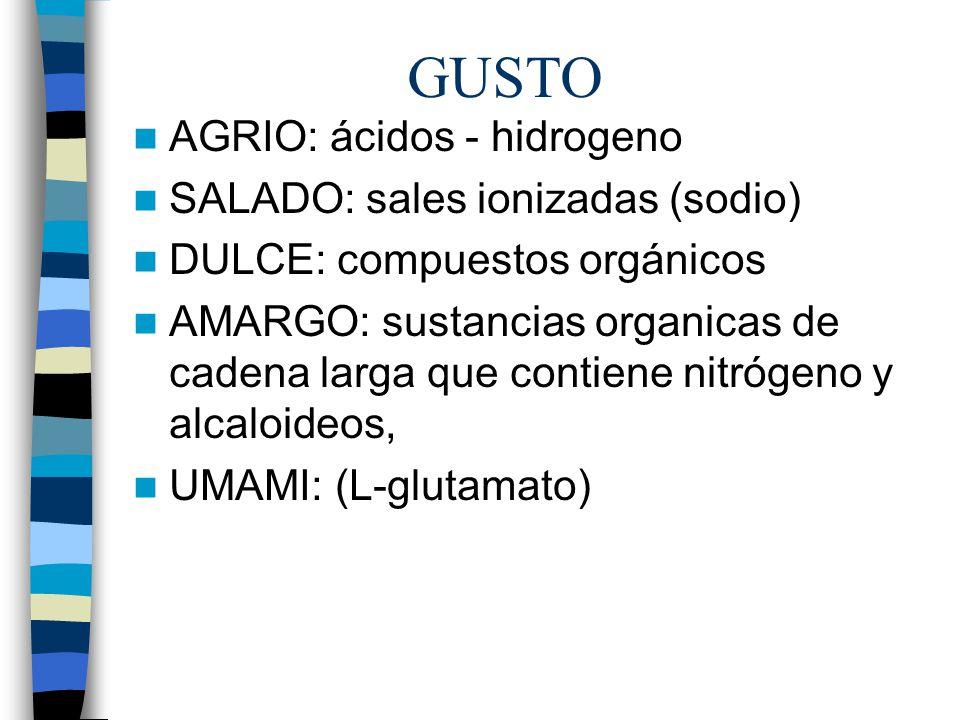GUSTO AGRIO: ácidos - hidrogeno SALADO: sales ionizadas (sodio)