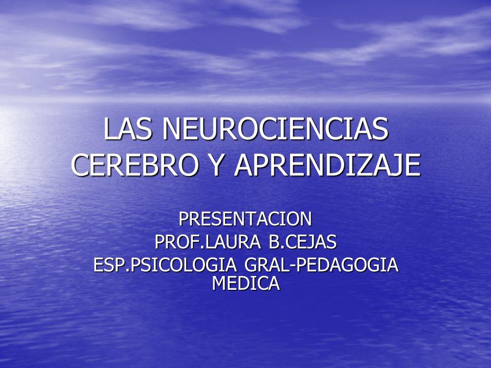 LAS NEUROCIENCIAS CEREBRO Y APRENDIZAJE