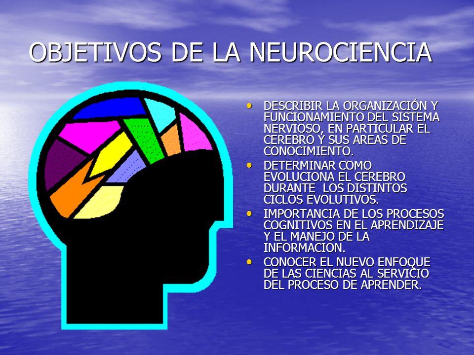 OBJETIVOS DE LA NEUROCIENCIA