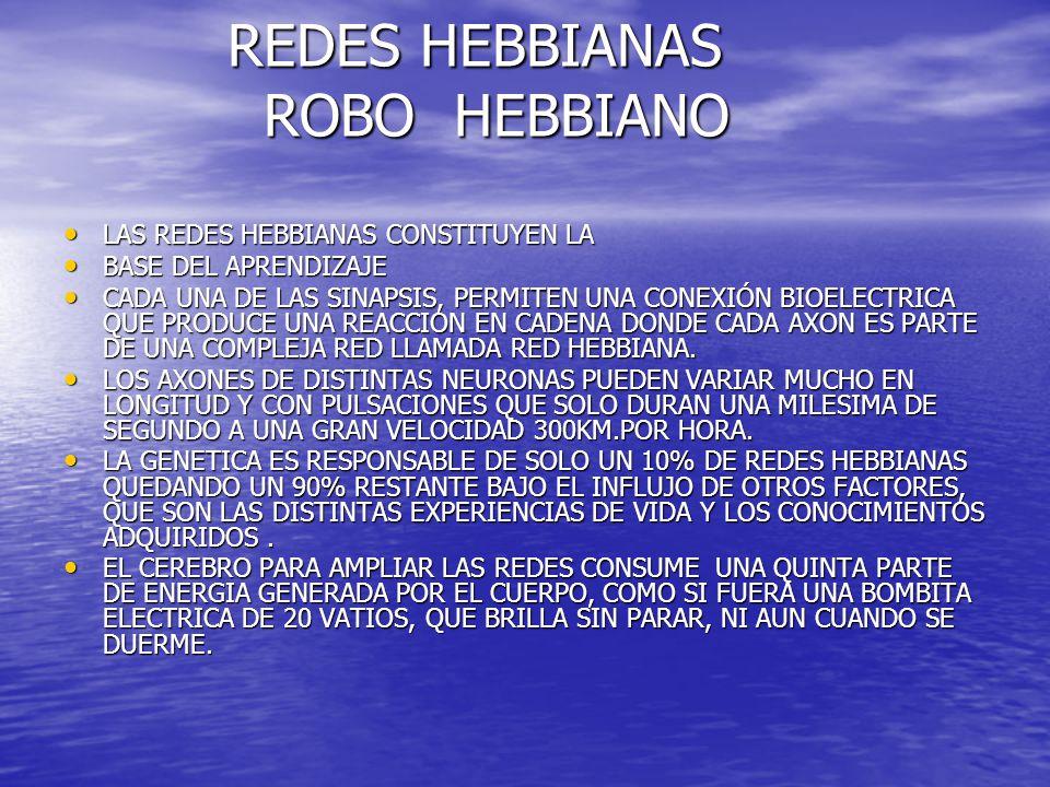 REDES HEBBIANAS ROBO HEBBIANO