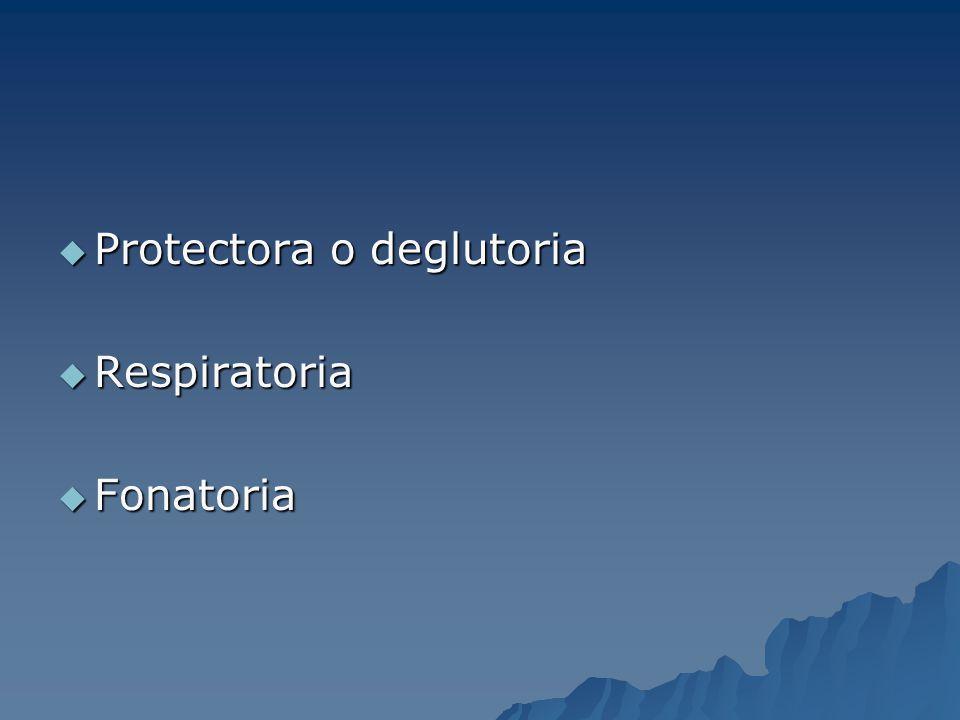 Protectora o deglutoria
