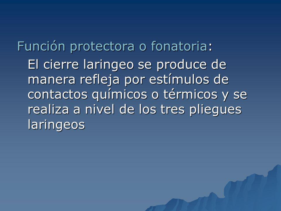 Función protectora o fonatoria: