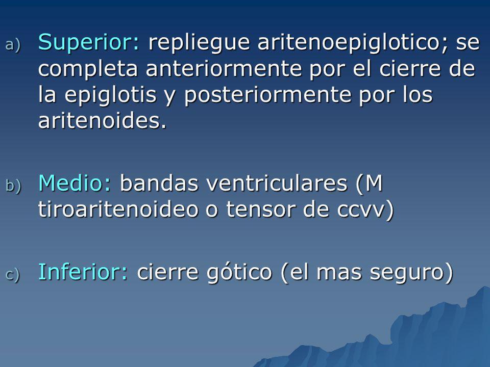 Superior: repliegue aritenoepiglotico; se completa anteriormente por el cierre de la epiglotis y posteriormente por los aritenoides.