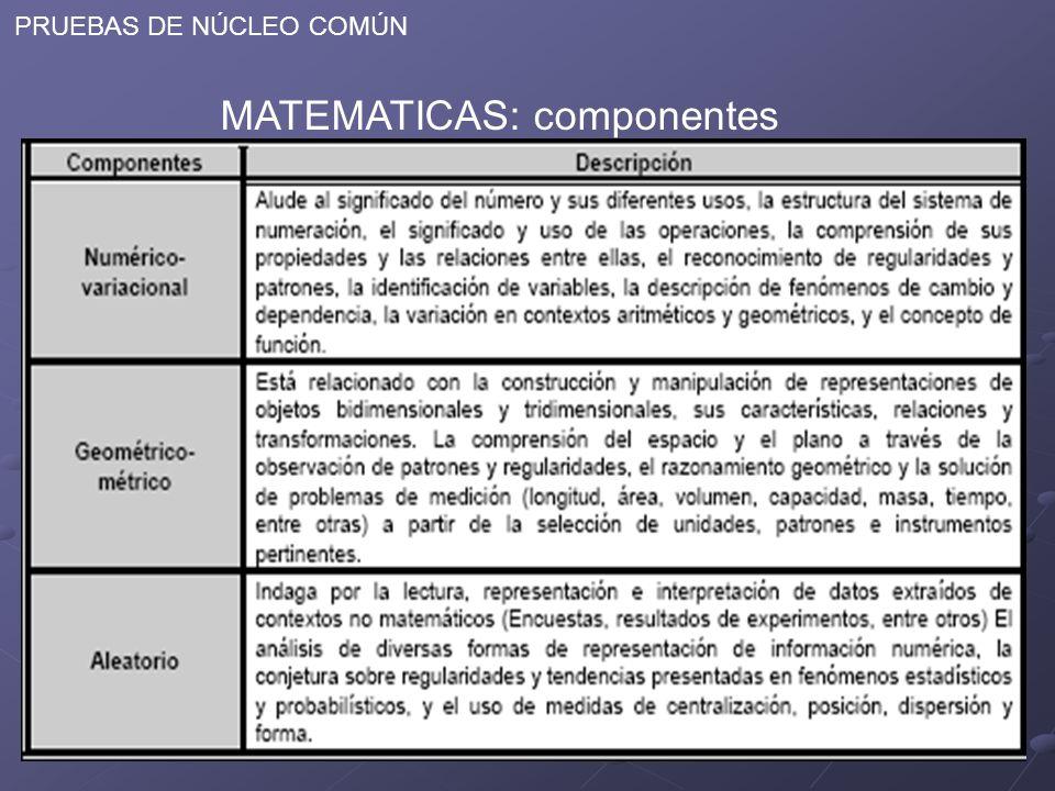 MATEMATICAS: componentes