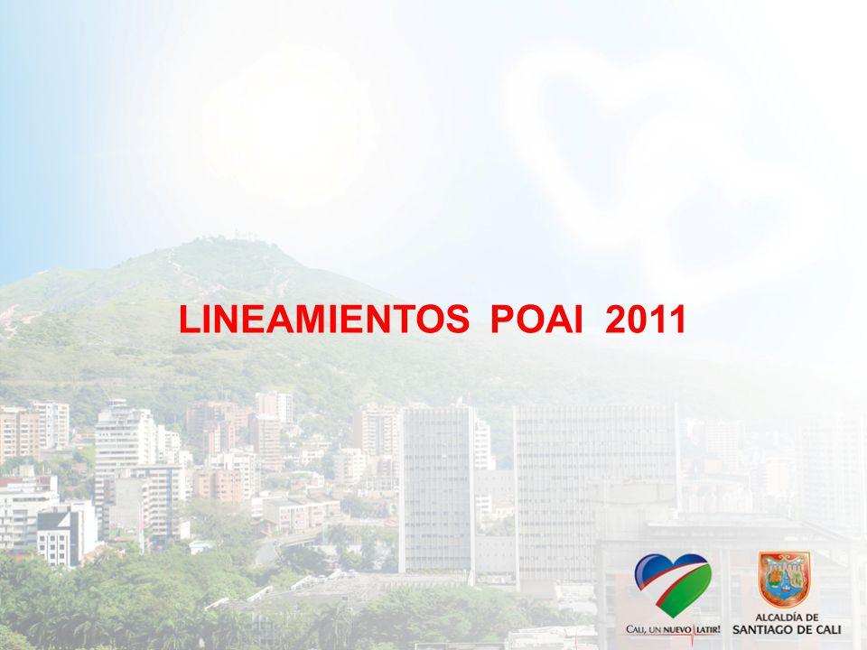 LINEAMIENTOS POAI 2011