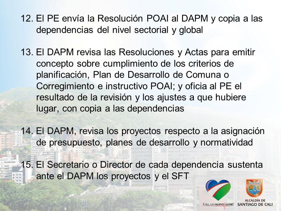 12. El PE envía la Resolución POAI al DAPM y copia a las dependencias del nivel sectorial y global