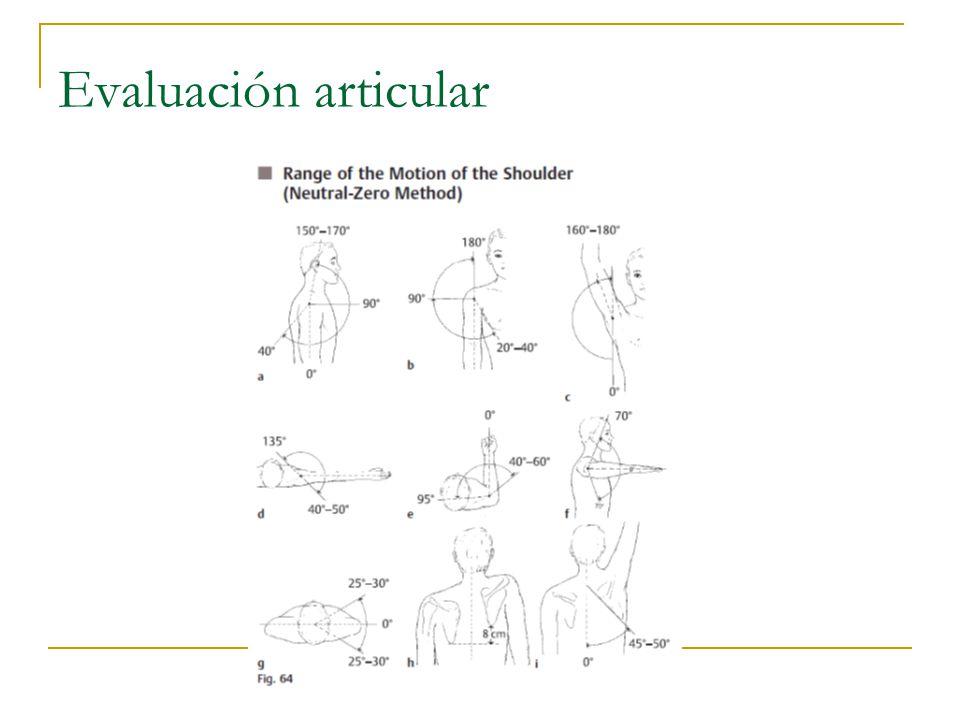 Evaluación articular 21