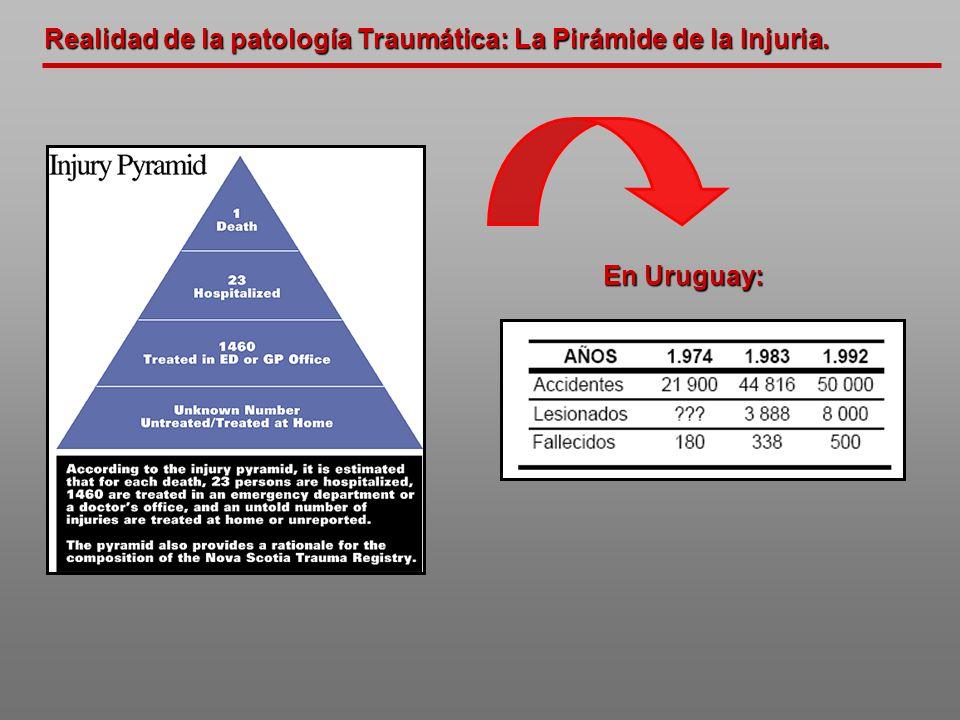 Realidad de la patología Traumática: La Pirámide de la Injuria.