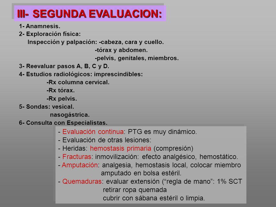 III- SEGUNDA EVALUACION: