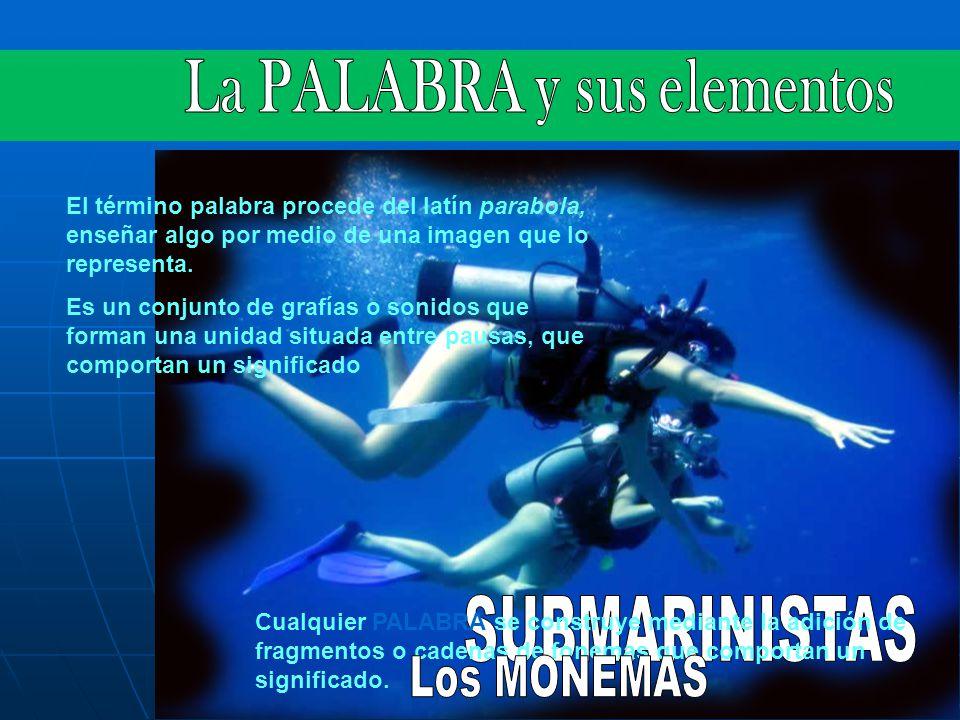 La PALABRA y sus elementos