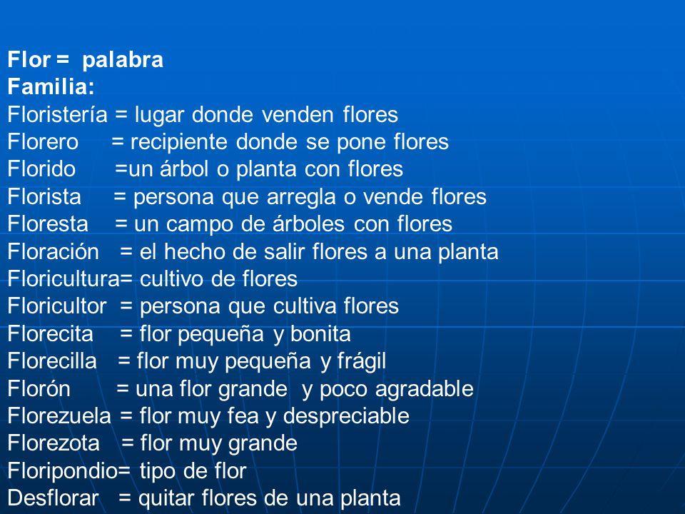 Flor = palabra Familia: Floristería = lugar donde venden flores. Florero = recipiente donde se pone flores.