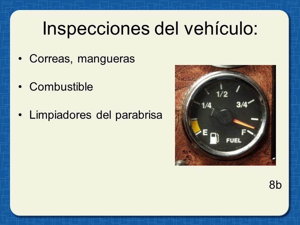 Inspecciones del vehículo: