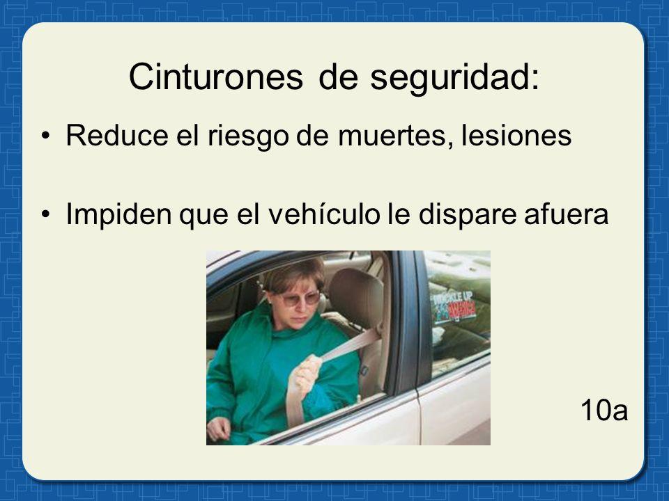 Cinturones de seguridad: