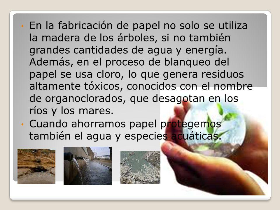 En la fabricación de papel no solo se utiliza la madera de los árboles, si no también grandes cantidades de agua y energía. Además, en el proceso de blanqueo del papel se usa cloro, lo que genera residuos altamente tóxicos, conocidos con el nombre de organoclorados, que desagotan en los ríos y los mares.