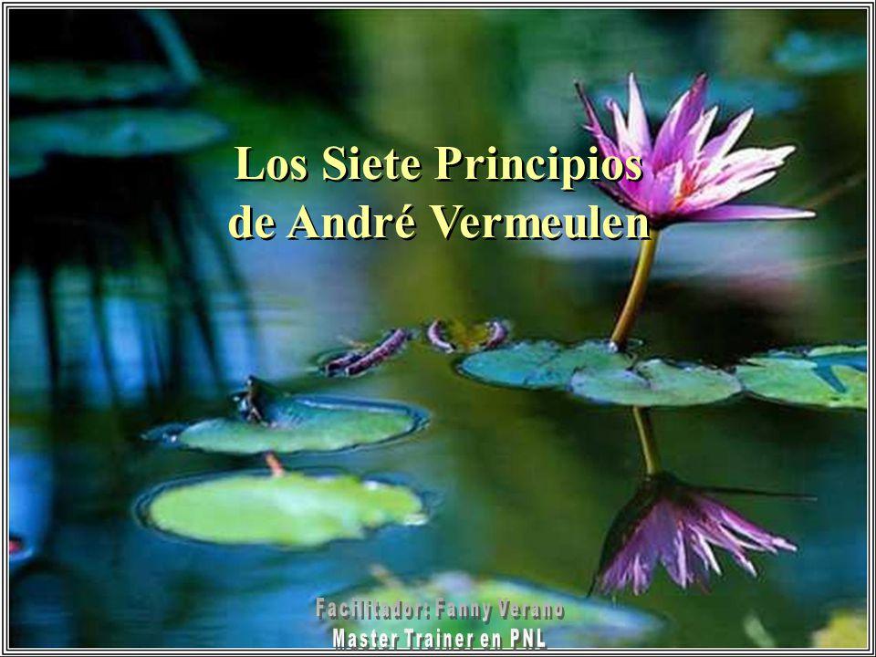 Los Siete Principios de André Vermeulen