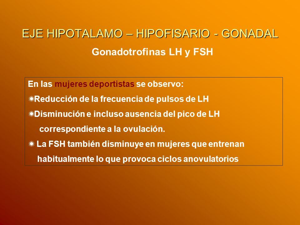 EJE HIPOTALAMO – HIPOFISARIO - GONADAL