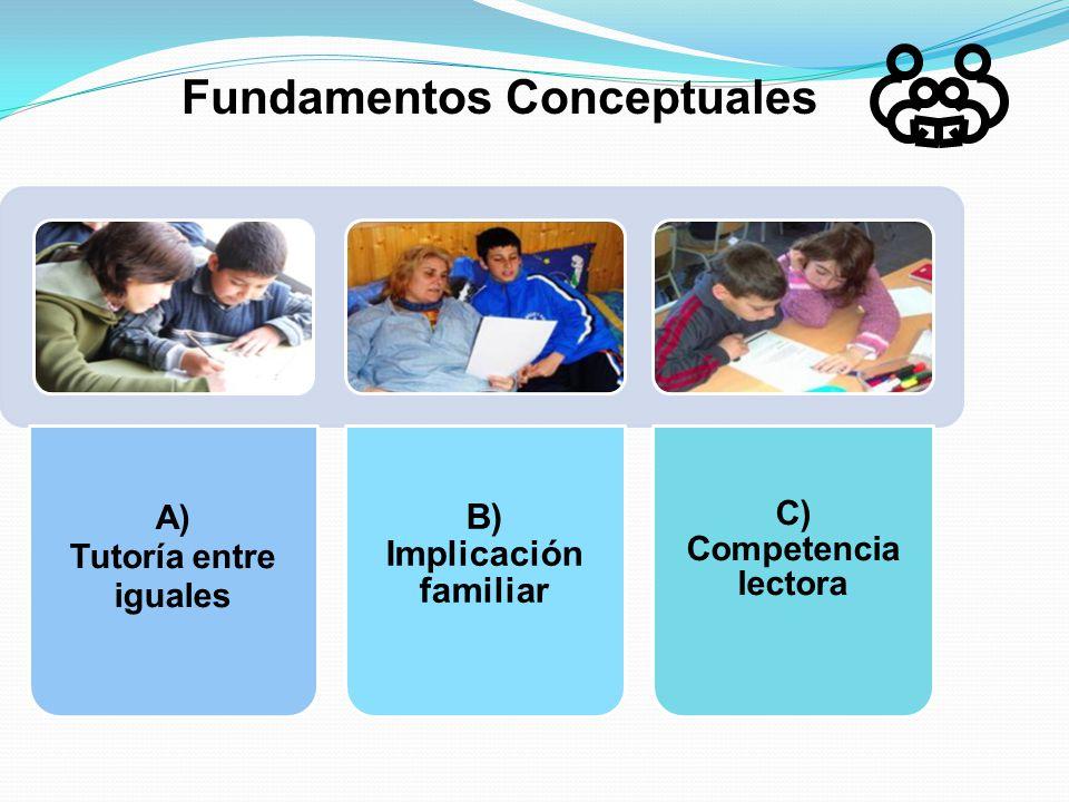 Fundamentos Conceptuales