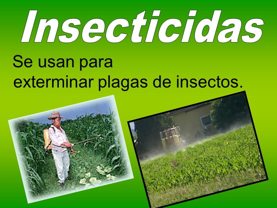 Insecticidas Se usan para exterminar plagas de insectos.