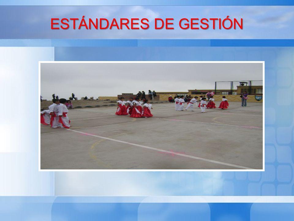 ESTÁNDARES DE GESTIÓN