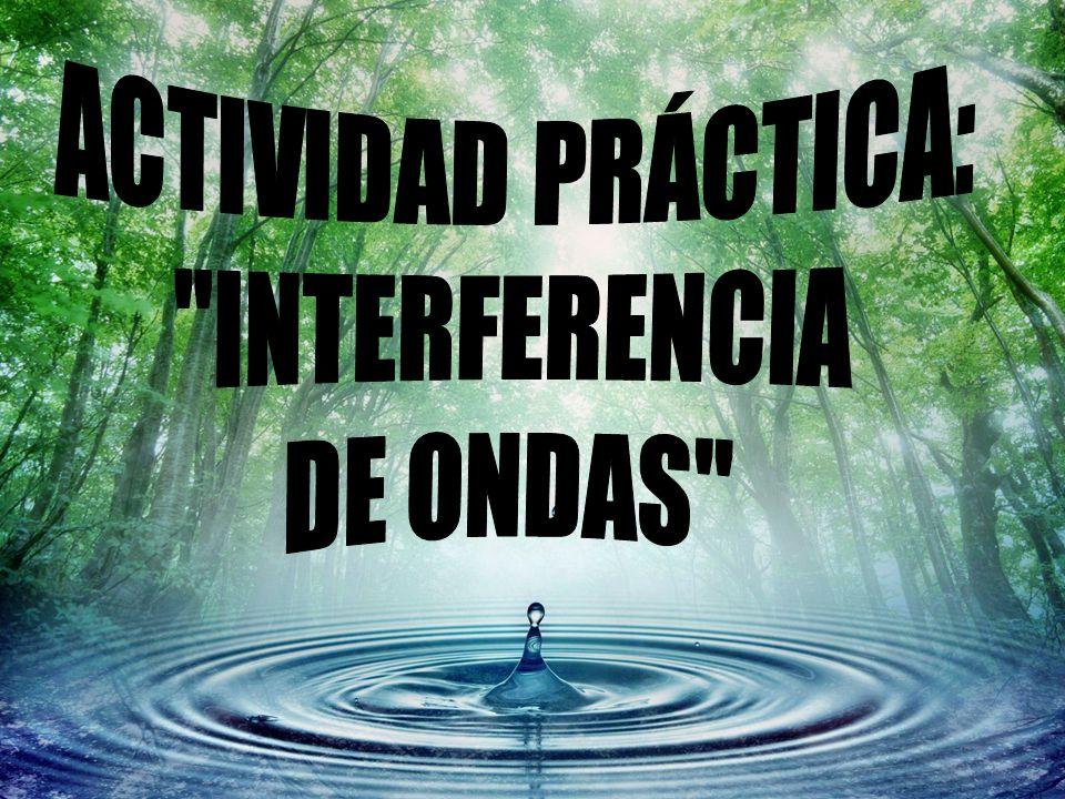 ACTIVIDAD PRÁCTICA: INTERFERENCIA DE ONDAS
