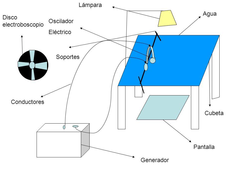 Lámpara Agua. Disco electroboscopio. Oscilador. Eléctrico. Soportes. Conductores. Cubeta. Pantalla.