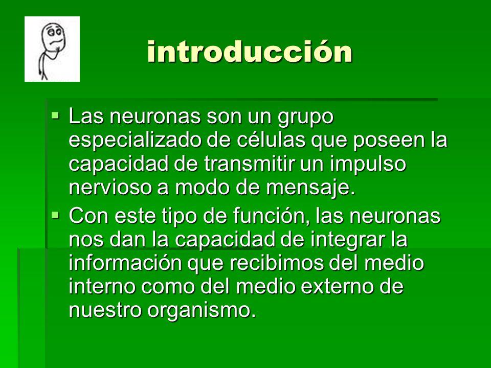 introducción Las neuronas son un grupo especializado de células que poseen la capacidad de transmitir un impulso nervioso a modo de mensaje.