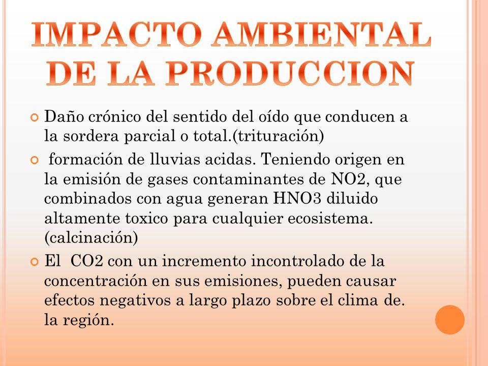 IMPACTO AMBIENTAL DE LA PRODUCCION