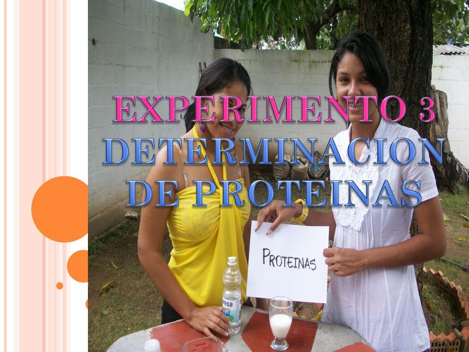 EXPERIMENTO 3 DETERMINACION DE PROTEINAS