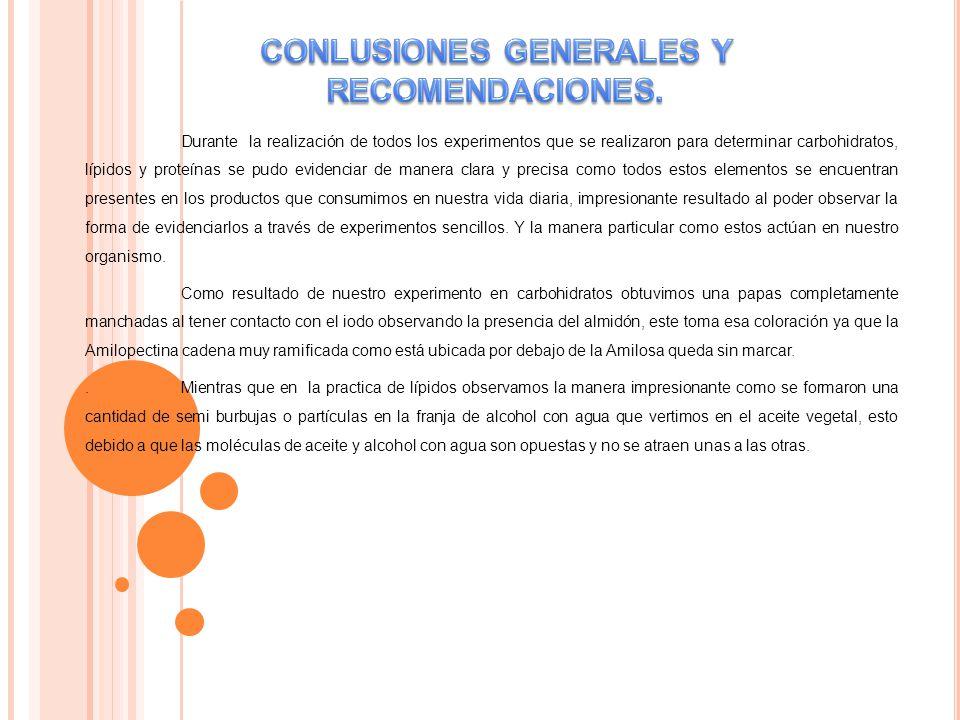 CONLUSIONES GENERALES Y RECOMENDACIONES.