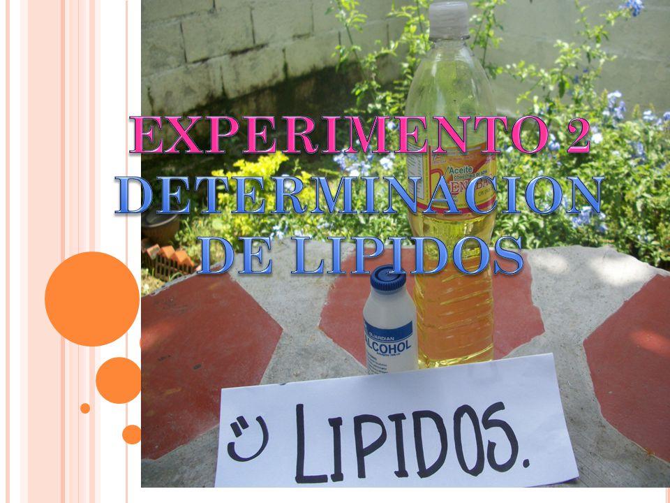 EXPERIMENTO 2 DETERMINACION DE LIPIDOS
