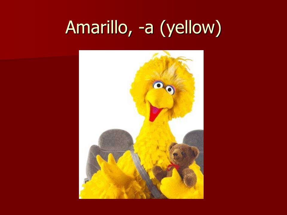 Amarillo, -a (yellow)