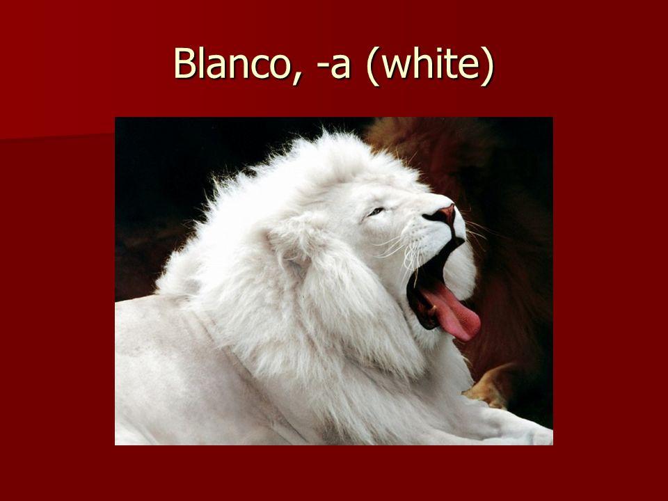 Blanco, -a (white)