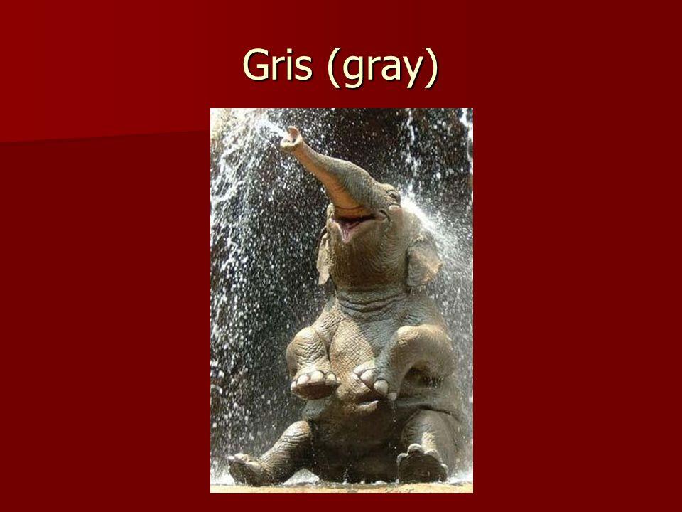 Gris (gray)