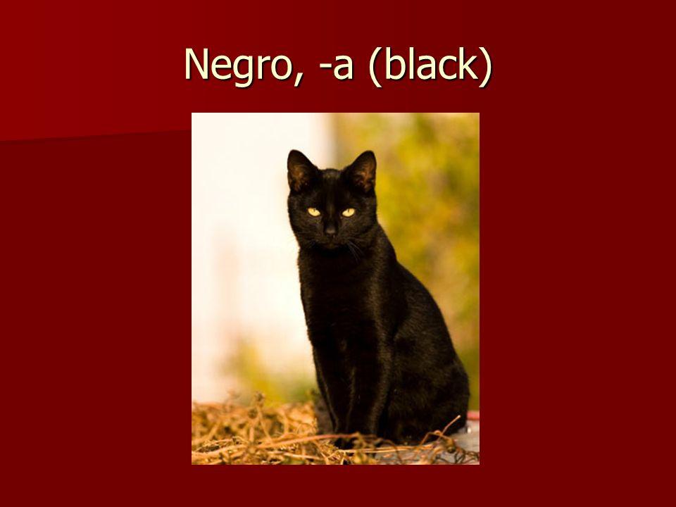Negro, -a (black)