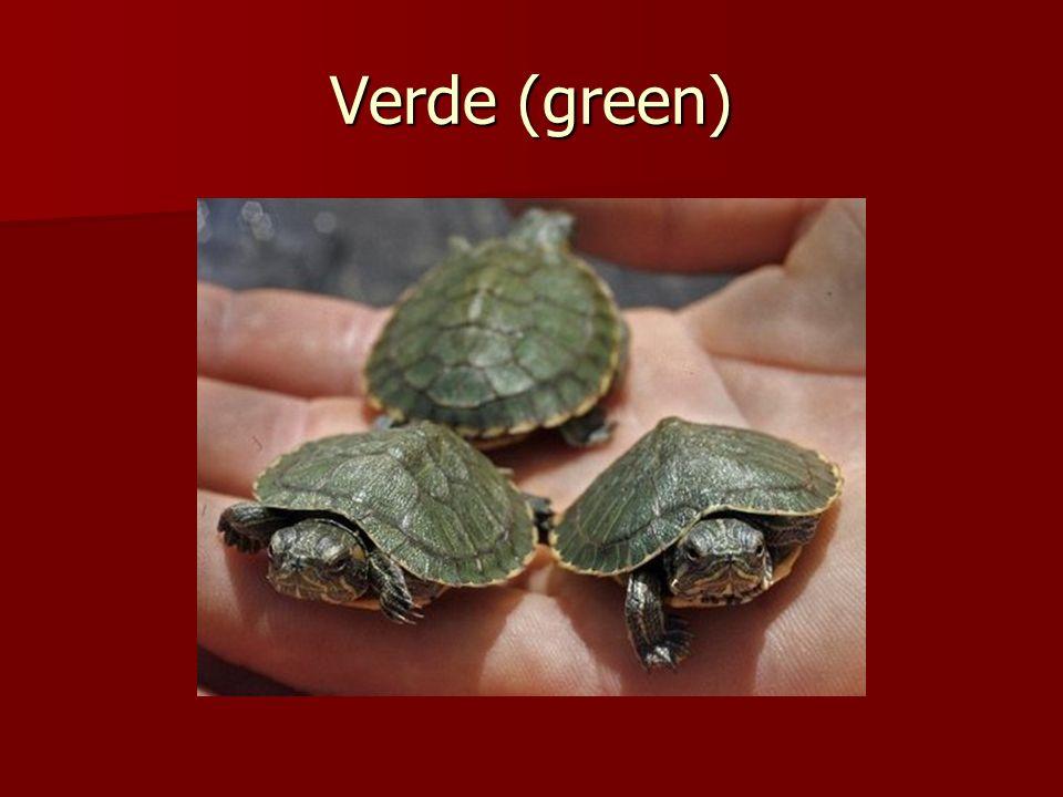 Verde (green)