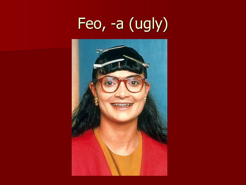Feo, -a (ugly)
