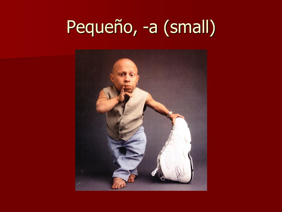 Pequeño, -a (small)