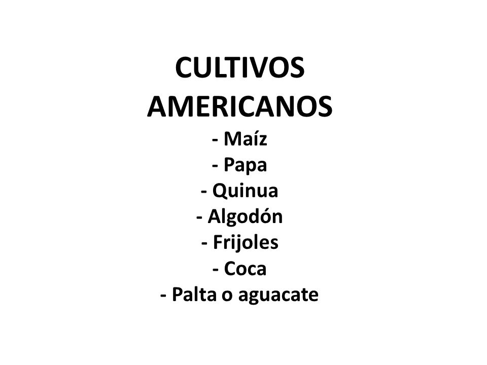 CULTIVOS AMERICANOS - Maíz - Papa - Quinua - Algodón - Frijoles - Coca