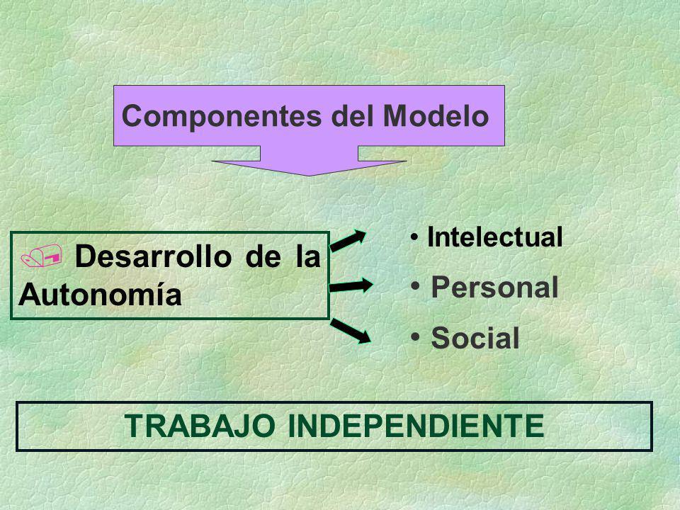 Componentes del Modelo TRABAJO INDEPENDIENTE