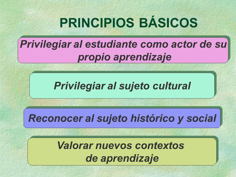 PRINCIPIOS BÁSICOS Privilegiar al estudiante como actor de su