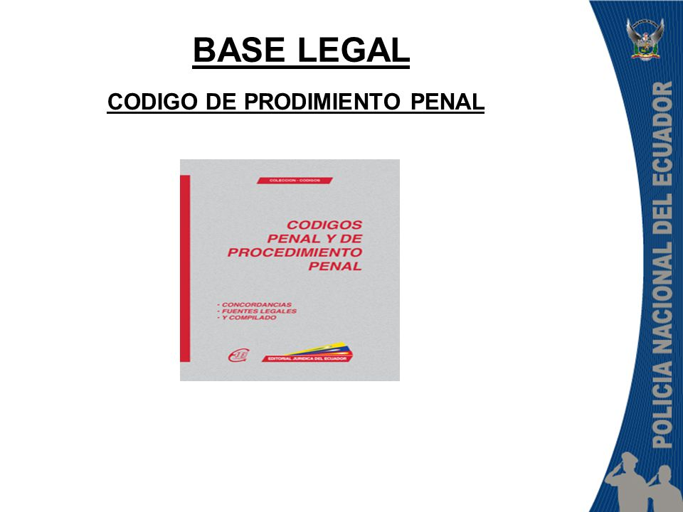 CODIGO DE PRODIMIENTO PENAL