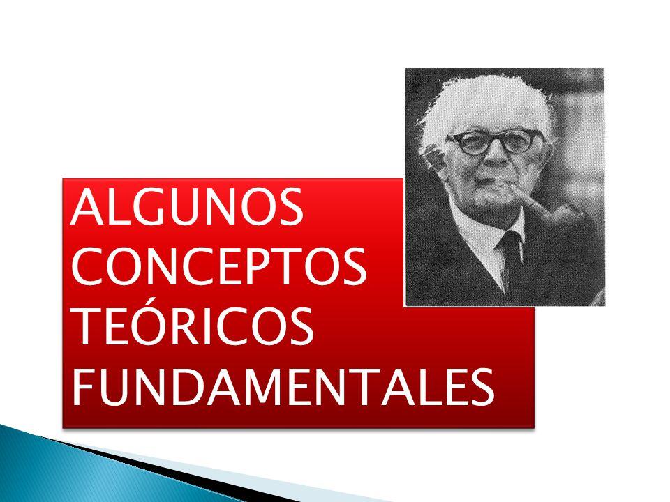 ALGUNOS CONCEPTOS TEÓRICOS FUNDAMENTALES