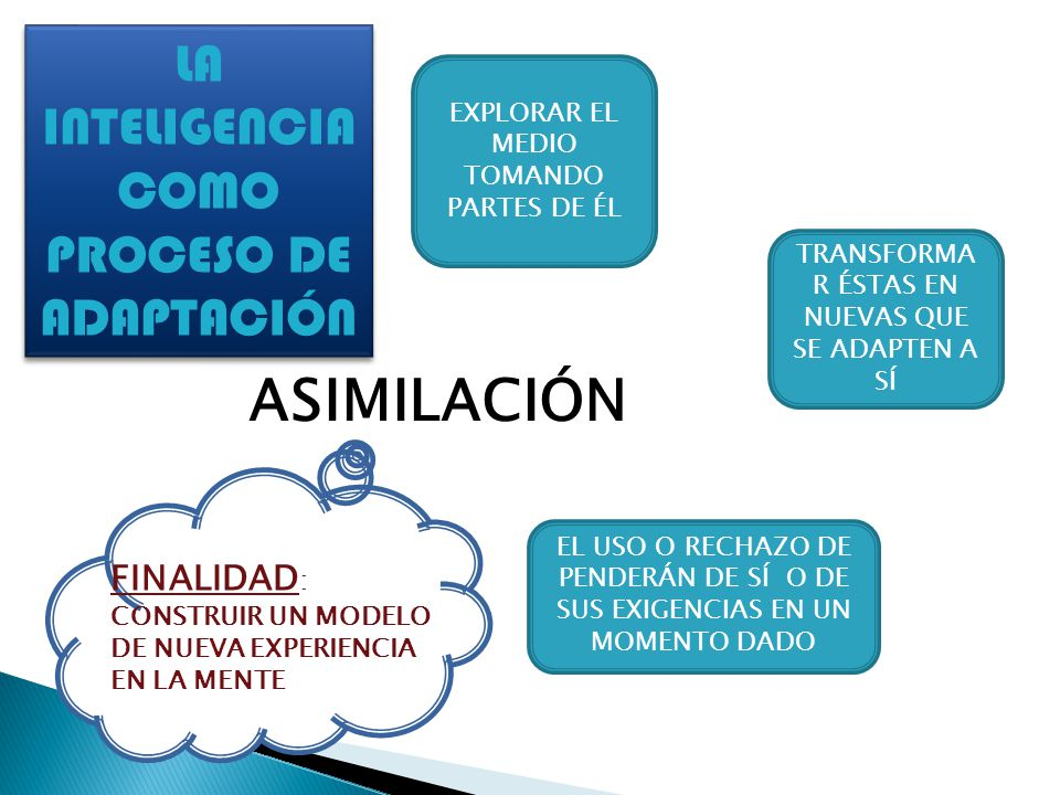 ASIMILACIÓN LA INTELIGENCIA COMO PROCESO DE ADAPTACIÓN FINALIDAD: