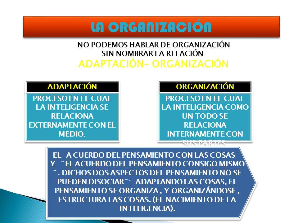 LA ORGANIZACIÓN ADAPTACIÓN- ORGANIZACIÓN